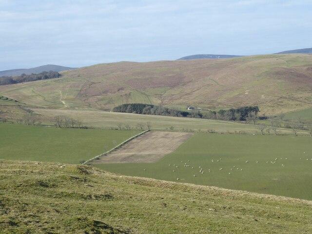 Looking across Fawdon Dean