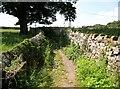 SD2878 : The Cumbria Way near Stockbridge Lane by Adrian Taylor