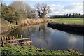 SP4576 : River Avon, King's Newnham by Stephen McKay
