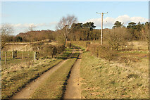 SE9304 : Bridleway to Twigmoor Woods by Richard Croft