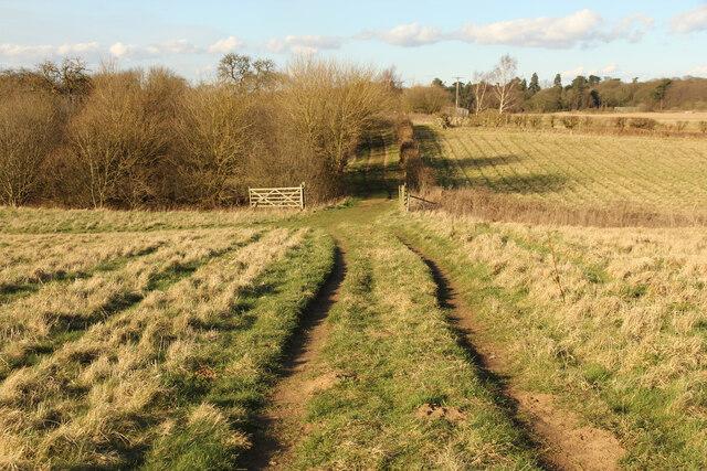 Bridleway at Middle Manton