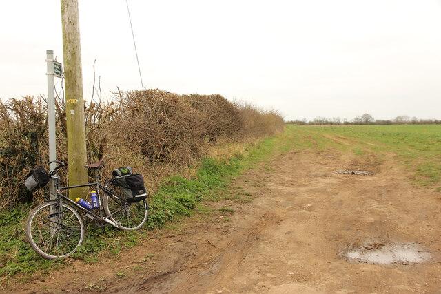 Bridleway to Westfield Lane