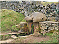 SD7719 : Robin Hood's Well by David Dixon