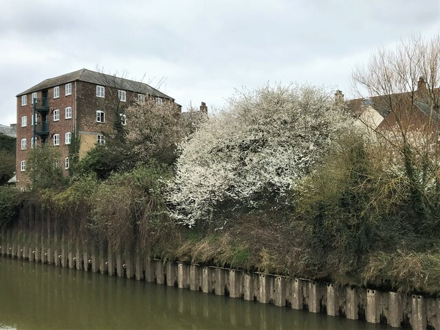 A view from Nene Quay in Wisbech