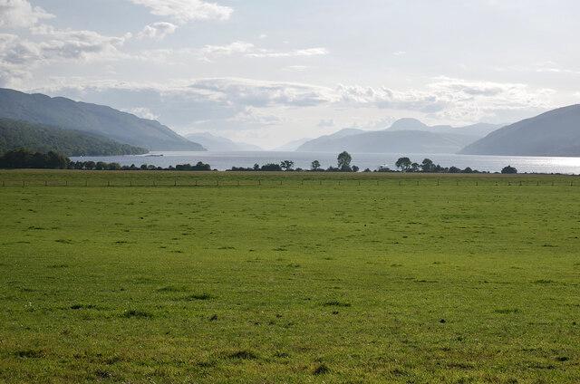 Fields, Strath Dores