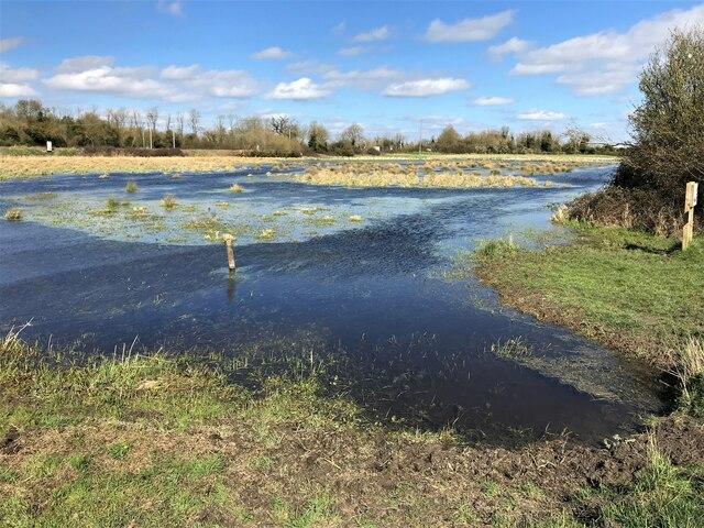 Flood meadow near Ely