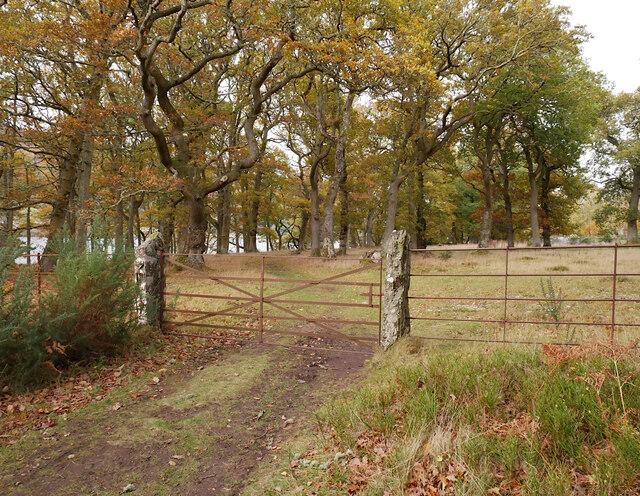 Gateposts, Aldourie