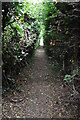 TQ4357 : Footpath to South Street by N Chadwick