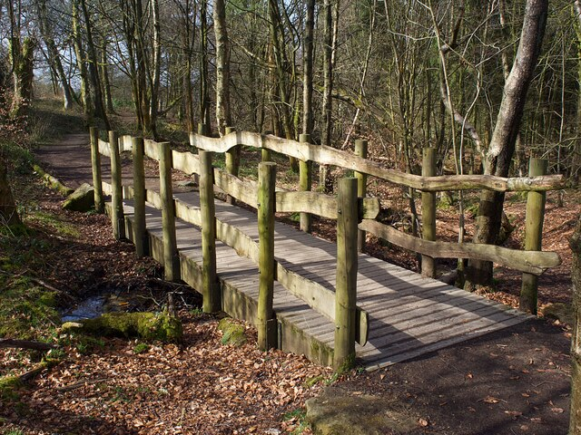 Footbridge in woodland at Longshaw