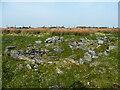 SE0532 : Remains of Quebec Farm, Denholme by Humphrey Bolton