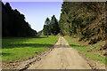 SE5584 : Cleveland Way heading up Flassen Dale by Chris Heaton