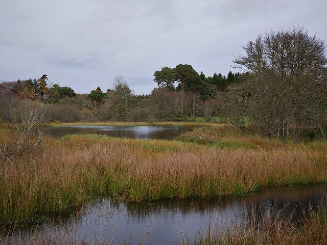 Deer Pond, Aldourie