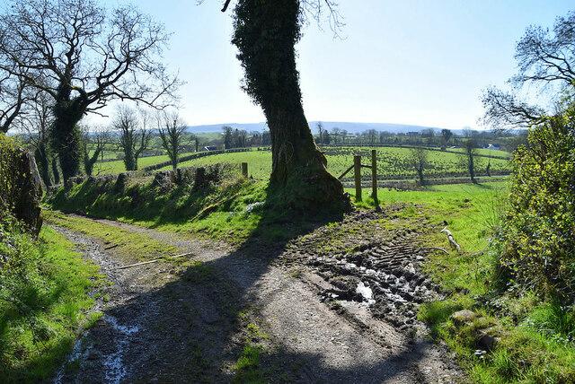 Muddy lane, Aghingowly