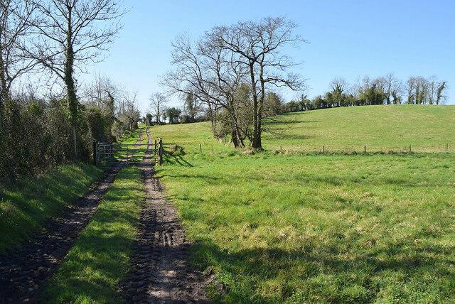 Muddy tracks along field, Aghingowly