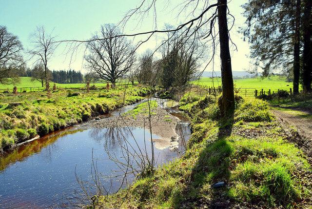 River Blackwater, Ballyness / Losset