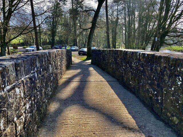 Tree shadows along Cranny footbridge