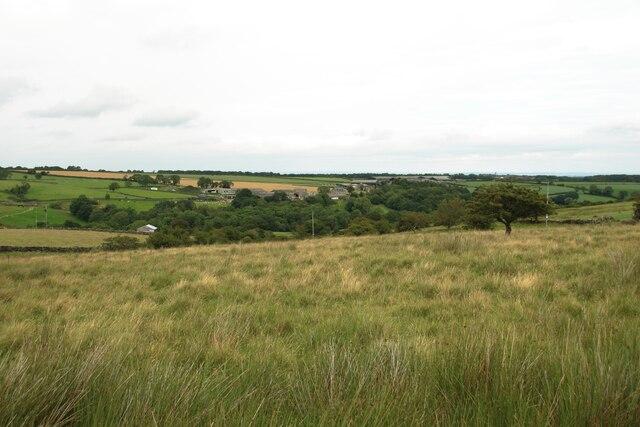 Grassland above Holen House Farm