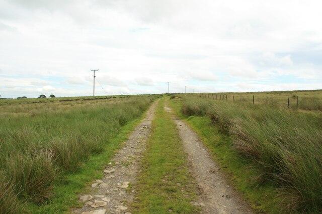 Farm track west of Springhill Farm