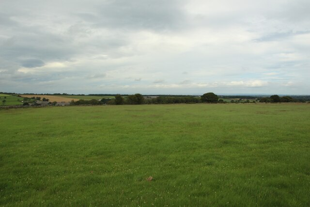 Grass field west of Springhill Farm