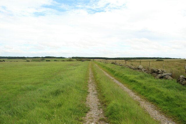 Track west of Springhill Farm