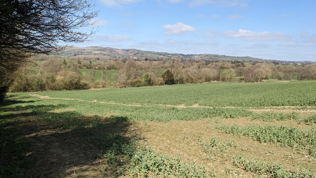 Countryside from Wenlock Edge