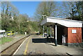 SX4368 : Calstock station by Roy Hughes