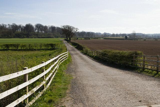 Track to Quarry House Farm