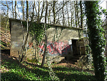 ST1281 : Derelict electricity sub-station in Garth Wood by Gareth James