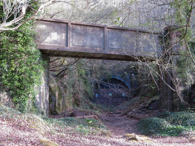 Footbridge over the trackbed of the Barry Railway in Garth Wood