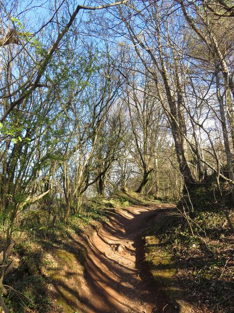 Footpath on Lesser Garth Hill