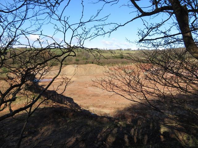 Ton Mawr Quarry, seen through the trees