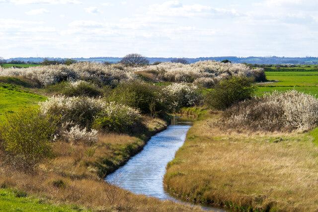 Spring at Lion Creek