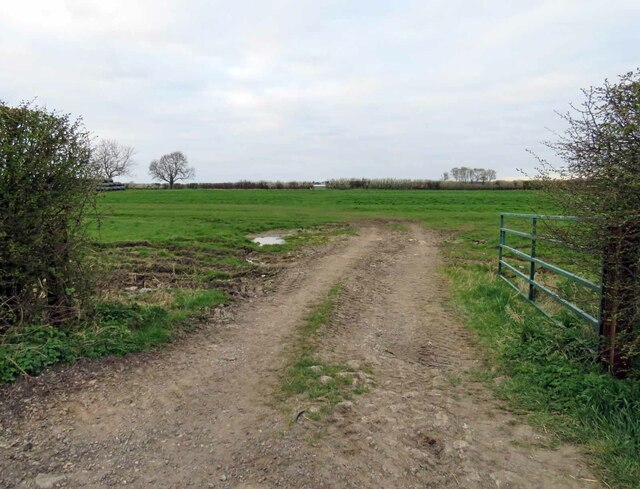 Entrance to field north of Harby Lane by Andrew Tatlow