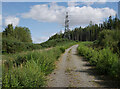 NH4850 : Track, Auchmore Wood by Craig Wallace