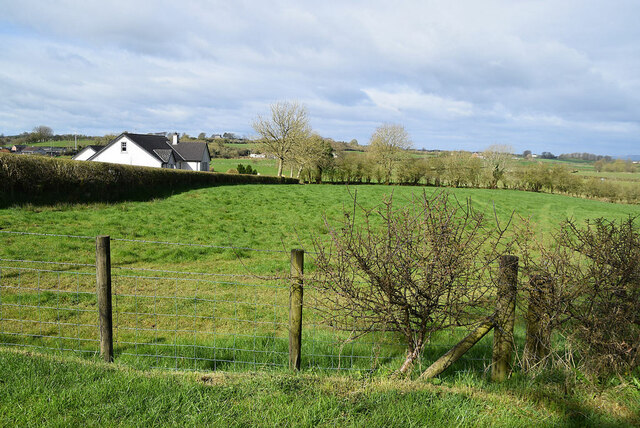 Cooley Townland