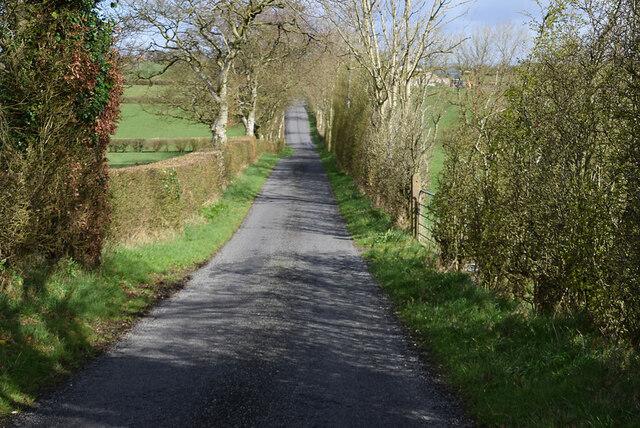 Patricks Road