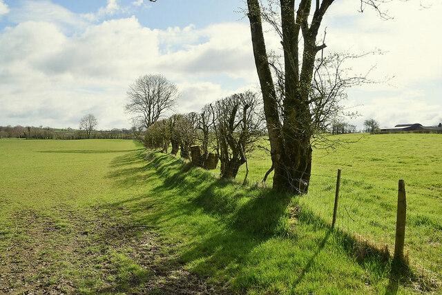 Boundary between fields, Cooley