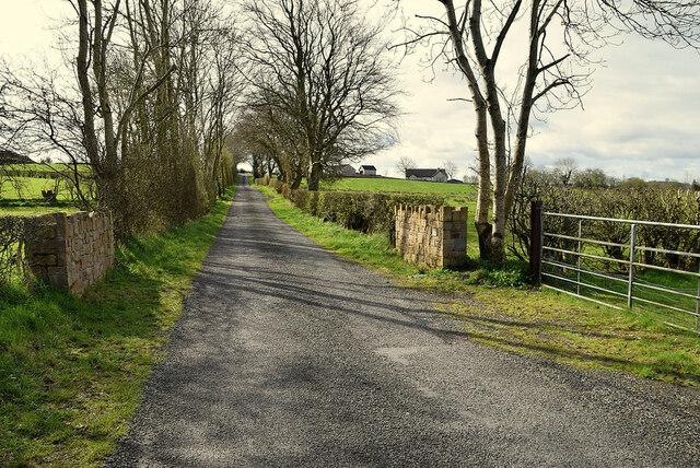 Bridge, Derroar / Cooley