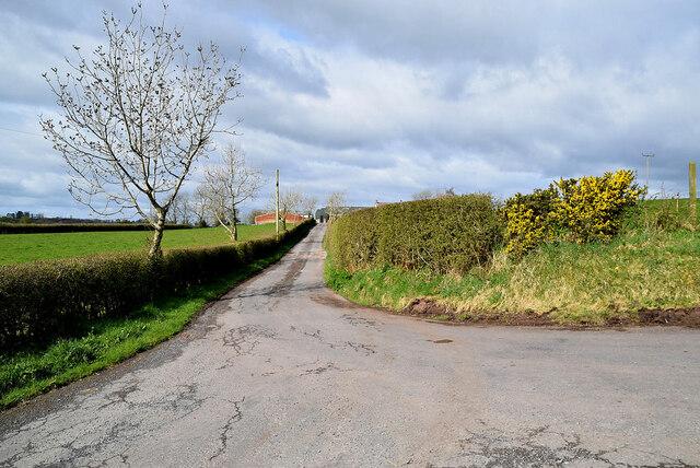 Lane to farm, Derroar