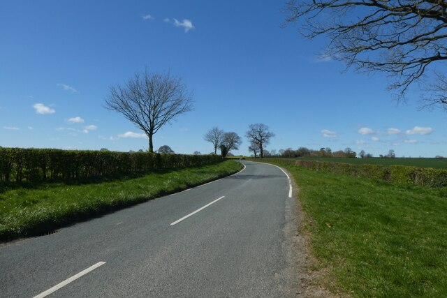 Road towards Cowthorpe by DS Pugh