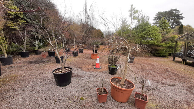 Rearranging the Plant Area, 4