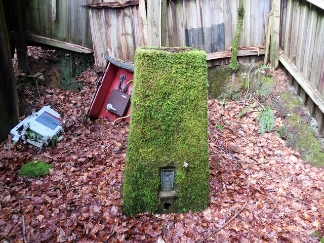 Triangulation pillar within an old shed in Mambeg Wood