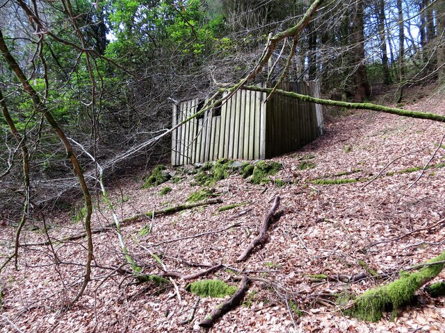Remains of an old shed in Mambeg Wood