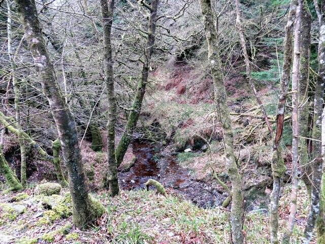 Clachan Burn in Clachan Glen, Rosneath