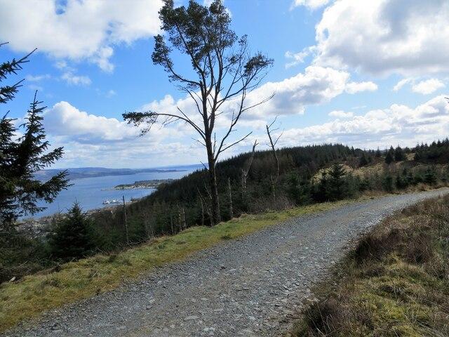 Forest road above Clynder
