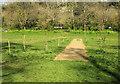 SX9364 : Former cricket pitch, Stoodley Meadow by Derek Harper
