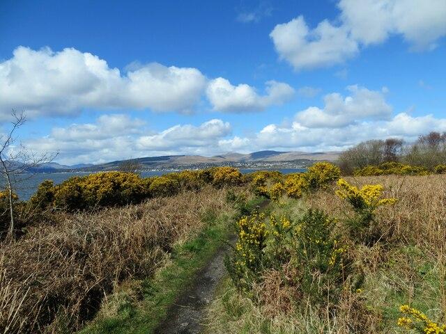 Pathway on Ardmore Peninsula