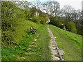 SE1026 : Footpath 9/381/2 approaching Kell Lane, Northowram by Humphrey Bolton