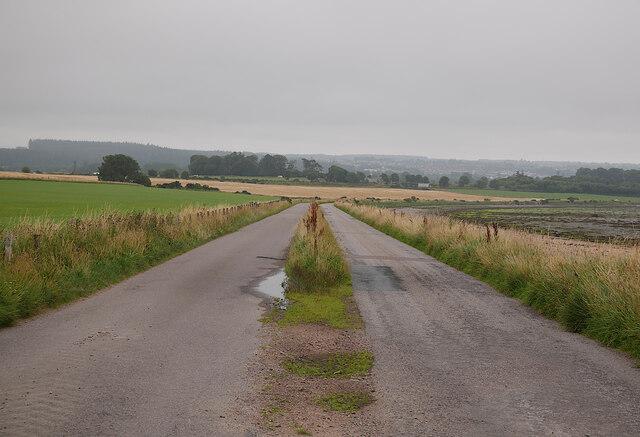Road, by Alturlie