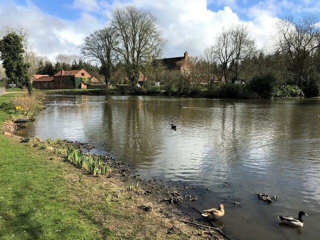 Pond on Weasenham Road in Great Massingham